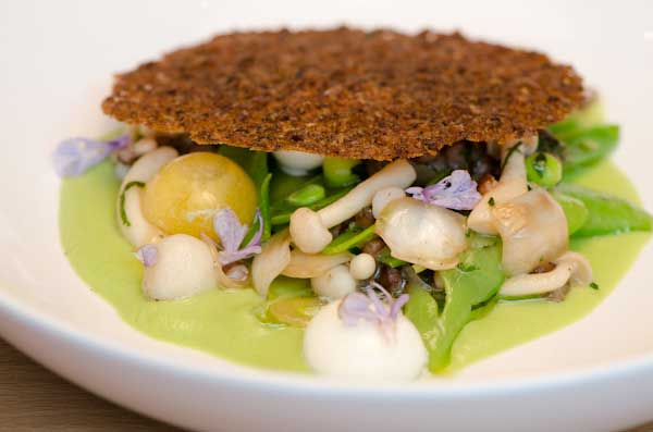 Aviary Restaurant warm snap pea and barley salad