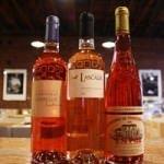 Tradition Wine
