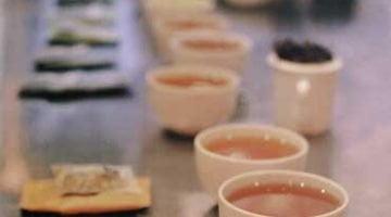 Smith Teamaker - Set up for tasting