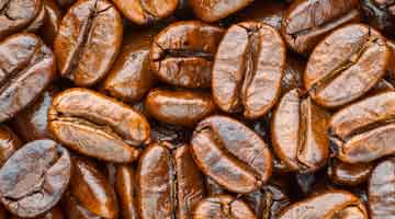 Water Avenue Coffee Signs Lease on New Roasting Facility