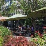 Zeppo Lake Oswego outdoor dining