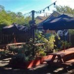 Backyard Social Portland outdoor dining