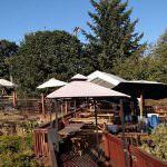 The Highland Stillhouse Pub
