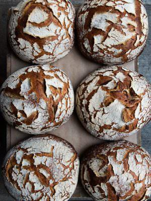 Little T American Baker Portland