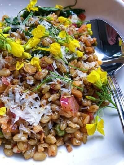 salad at Mediterranean Exploration Company Portland